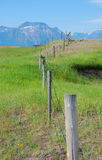 Cerca de uma exploração agrícola Foto de Stock Royalty Free