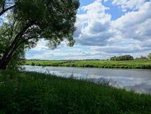 Cerca de un río Fotografía de archivo