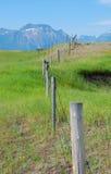 Cerca de una granja Foto de archivo libre de regalías