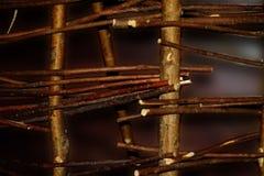 Cerca de vime de ramos de árvore imagem de stock royalty free