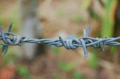 Cerca 3 del alambre de púas Fotos de archivo libres de regalías