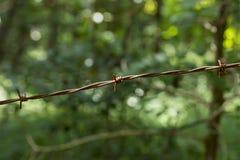 Cerca 3 del alambre de púas Fotografía de archivo libre de regalías
