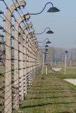 Cerca del alambre de púas - Auschwitz Birkenau Fotografía de archivo libre de regalías