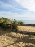 Cerca del bacalao de cabo Fotografía de archivo