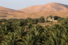 Cerca del desierto. Imagen de archivo libre de regalías