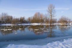 Cerca del río del invierno Foto de archivo libre de regalías