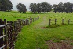 Cerca del rancho Imagen de archivo libre de regalías