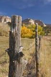 Cerca del rancho Imágenes de archivo libres de regalías