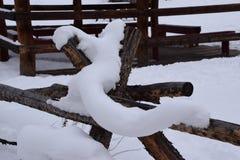 Cerca del registro cubierta en nieve Imagen de archivo libre de regalías