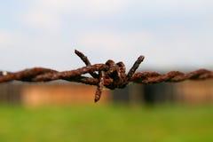 Cerca do arame farpado de Auschwitz Foto de Stock