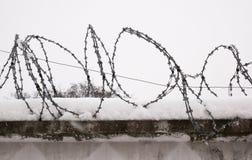Cerca do arame farpado em um inverno com neve imagem de stock royalty free