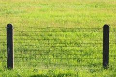 Cerca do arame farpado na grama verde Fotografia de Stock