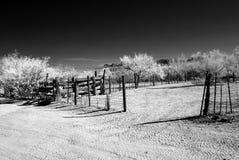 Cerca do deserto no Arizona fotografia de stock