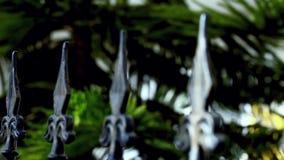 Cerca do ferro e natureza verde filme