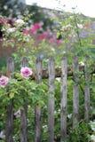 Cerca do vintage do jardim da casa de campo imagem de stock