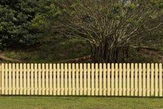 Cerca e árvores de piquete Imagens de Stock