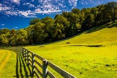 Cerca e campo de exploração agrícola bonito no Condado de York, Pensilvânia Fotos de Stock Royalty Free