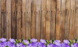 Cerca e flores de madeira velhas fotografia de stock royalty free