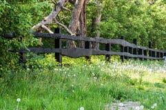 Cerca e natureza de madeira Fotografia de Stock Royalty Free