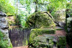 Cerca em uma floresta Fotografia de Stock Royalty Free