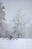 Cerca em uma paisagem da neve Imagem de Stock
