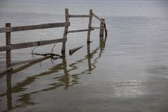 Cerca en el lago de Constanza cerca de Radolfzell Fotografía de archivo
