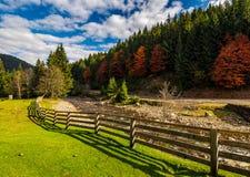 Cerca en el prado cerca del río del bosque en montañas del otoño Imágenes de archivo libres de regalías