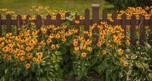 Cerca Gardening Foto de archivo libre de regalías