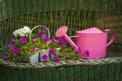 Cerca Gardening Imagen de archivo libre de regalías