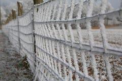 Cerca gelado Foto de Stock Royalty Free