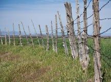 Cerca Line de poste del pino Fotografía de archivo