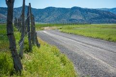 Cerca Line de poste del pino Fotos de archivo