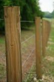 Cerca longa dos bornes de madeira 2 Imagem de Stock