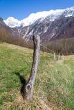 Cerca nas montanhas Fotografia de Stock Royalty Free