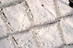 Cerca negra del invierno adornada con la escarcha blanca en un enero m imagenes de archivo