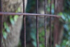 Cerca oxidada Imagen de archivo libre de regalías