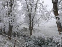 Cerca rústica cercada por árvores gelados e por campos Imagens de Stock