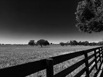 Cerca Row de la granja del caballo Foto de archivo libre de regalías
