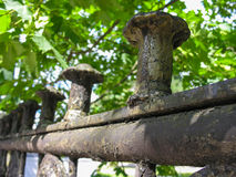 Cerca velha do ferro de molde Foto de Stock