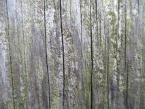 Cerca vieja de la madera foto de archivo libre de regalías
