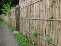 Cerca vieja de la puerta y del bambú Foto de archivo