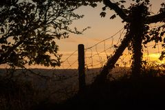 Cerca y árbol silueteados contra puesta del sol Fotos de archivo libres de regalías