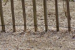 Cerca y arena de la playa Foto de archivo libre de regalías