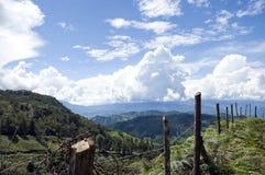 Cerca y montañas Imagen de archivo