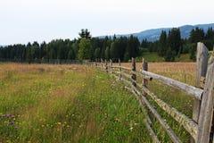 Cerca y prado de madera del campo en Bucovina imagenes de archivo