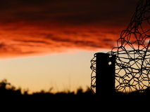 Cerca y puesta del sol del pollo Foto de archivo