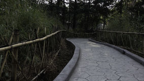 Cerca y trayectoria de bambú Fotos de archivo