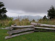 cerca y Wildflowers del Partir-carril en el Ridge azul Fotografía de archivo