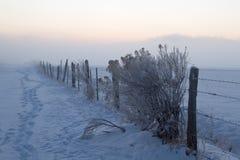 Cercado del alambre de púas cubierto en nieve del invierno Imagenes de archivo