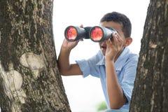 Cercando Fotografie Stock Libere da Diritti